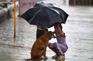 amor y bondad